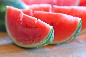 watermelon,summercamp