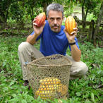 chris_with_ripe_cocao_pods_ecuador_icon_1