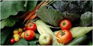 biodynamic food