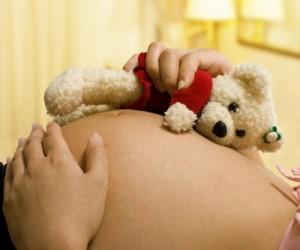 pregnant with teddy bear