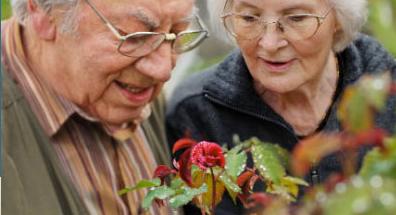 Photo: The John A Hartford Foundation website
